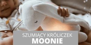szumiacy krolik Moonie
