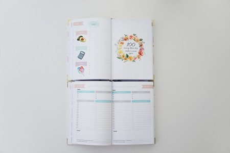 Mommy Planner - Amy Gold
